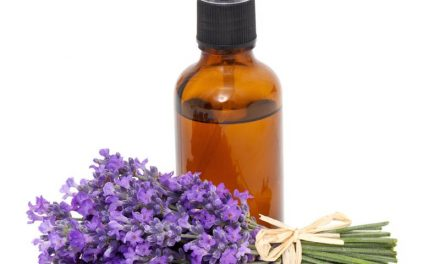 Essential Oils At Home ~ Lavender & Cedarwood Pillow Spray
