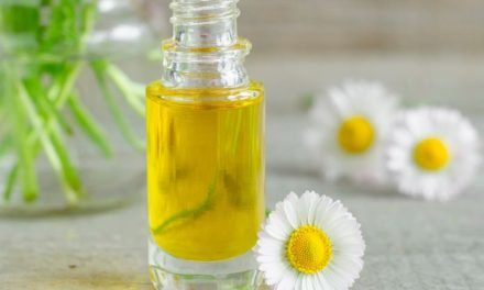 Essential Oils At Home ~ Roman Chamomile