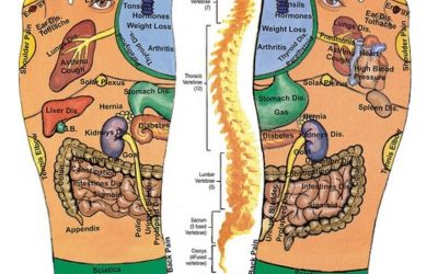 The Reflexology Language MAP