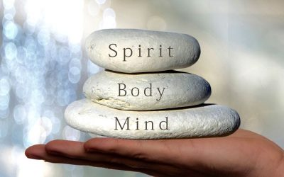 Wellness ~ Body & Mind Transformation