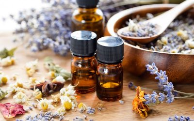 Essential Oils At Home ~ 5 Summer Must Try Diffuser Blends