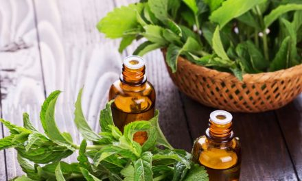 Essential Oils At Home ~ Peppermint