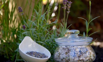 Peppermint And Lavender Salt Scrub