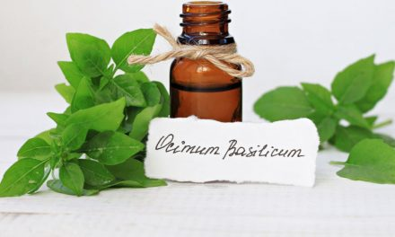 Essential Oils At Home ~ Basil