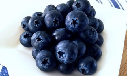 Why Are Blueberries So Good For You?